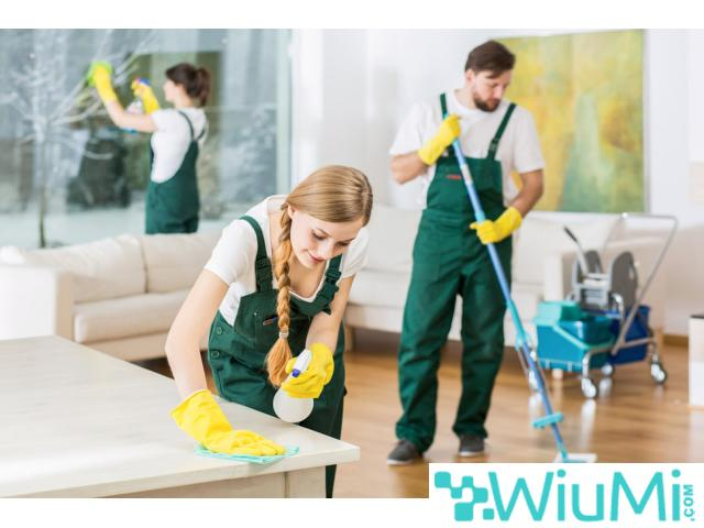 London - professional cleaning services - 1/1