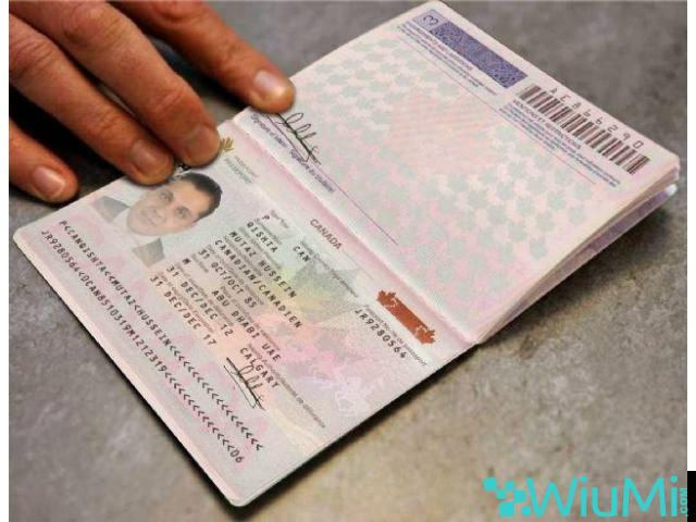 Registered Travel Passport, Driving License,ID Cards,Accademic Certificates, Visa Card, - 4/5