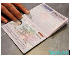 Registered Travel Passport, Driving License,ID Cards,Accademic Certificates, Visa Card, - Image 4/5