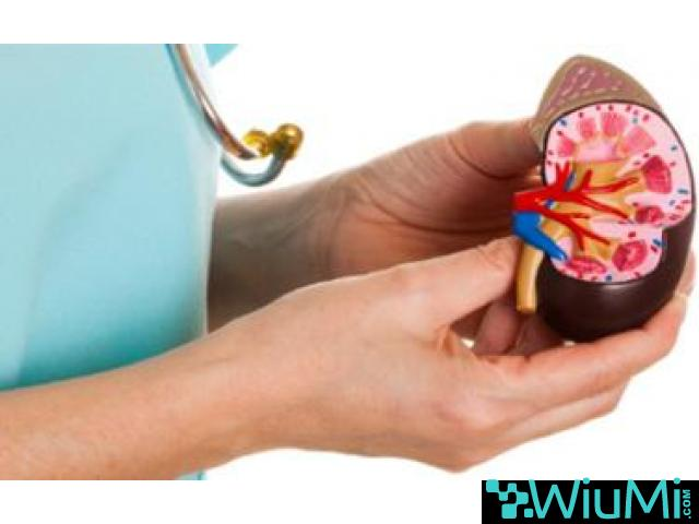 Kidney Transplant In Hyderabad | Chronic Kidney Disease Treatment Hyderabad - 3/3