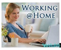 Work from home - Image 1/3