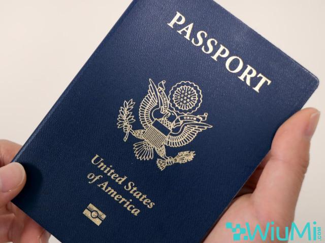 Buy and sell passports, license and ID - 2/4