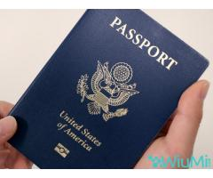 Buy and sell passports, license and ID