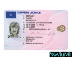 Buy and sell passports, license and ID - Image 3/4