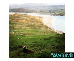 Holiday in Ireland - Image 1/4