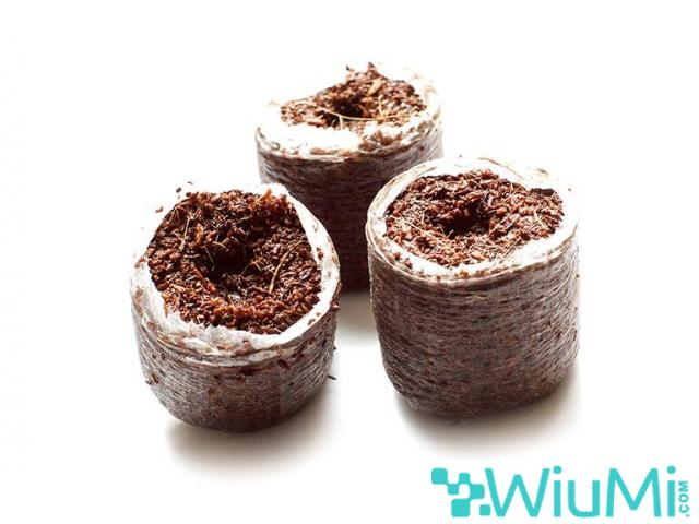Finding biodegradable coir growing containers for cannabis? Visit Riococo-mmj! - 4/4