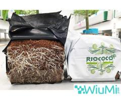 coir growing containers for cannabis - Image 3/4