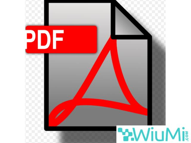 Buy DOCX to PDF Converter and Convert Just in One Click - 1/1