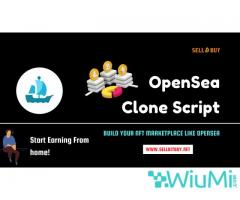 How To Start OpenSea like NFT With OpenSea Clone Script? - Image 3/4
