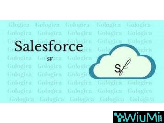 Sales Force Online Training - 1/1