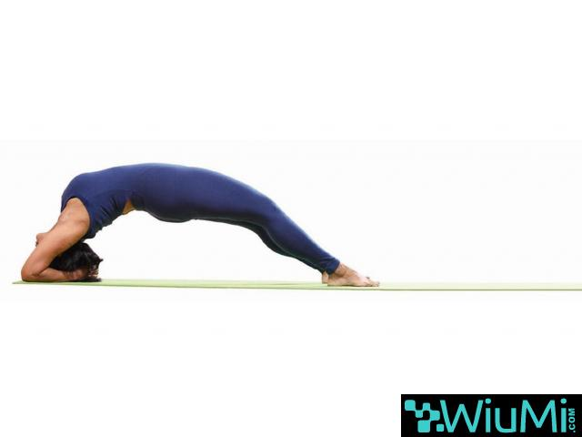 Power Yoga Classes In Hyderabad | Best Yoga Studio | Yoga Certification In Kondapur - 1/5